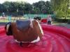 Sommerfest-2016_DSC01176