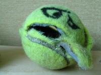 Tennis4_flickr.com_Tennis Ball Face  Barf_2870219915